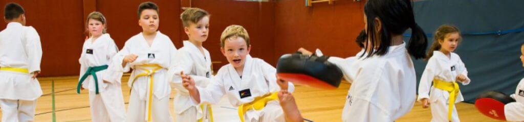 Taekwondo Team Kocer e.V.